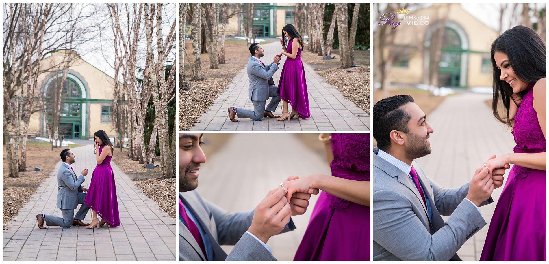 Grounds-for-Sculpture-Hamilton-NJ-Engagement-Shoot-Khushboo-Ruben-00012.jpg