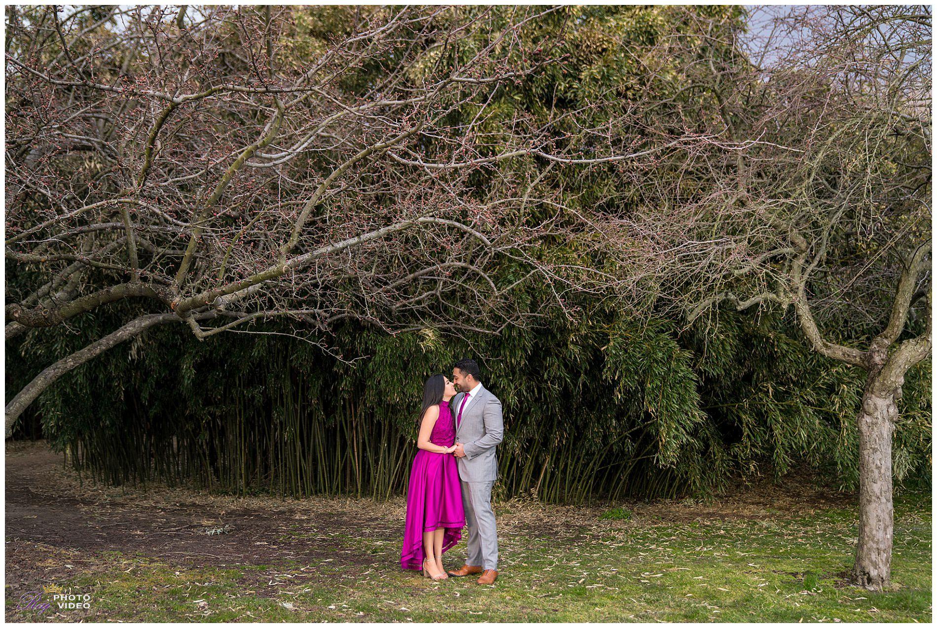Grounds-for-Sculpture-Hamilton-NJ-Engagement-Shoot-Khushboo-Ruben-00016.jpg